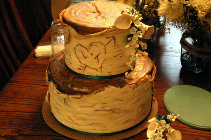 birch bark tree cake