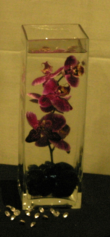 submerged orchids with lighting